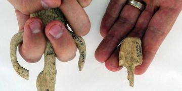 Kızılderililer 1500 önceye dek çocukları minyatür silahlarla eğitiyorlardı