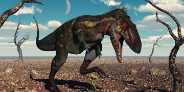 Nanotyrannus türü bir dinozorun hiç olmadığı savunuluyor