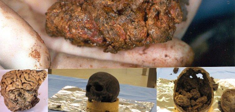 Heslington beyninin 2600 yıldır neden çürümediğine dair yeni bir tez