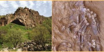 Irakta bir Neandertalin ezilmiş kafatası ve gövde kemikleri bulundu