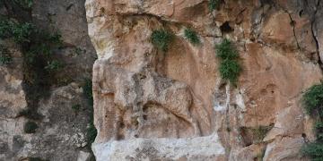 Şırnakta 6 bin yıllık rölyef tahrip edildi