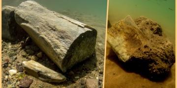 Kayseride 7,5 milyon yıllık fosil baraj suları altından çıkartıldı