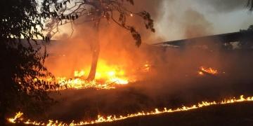 Alata Bahçe Kültürleri Araştırma Enstitüsünde yangın