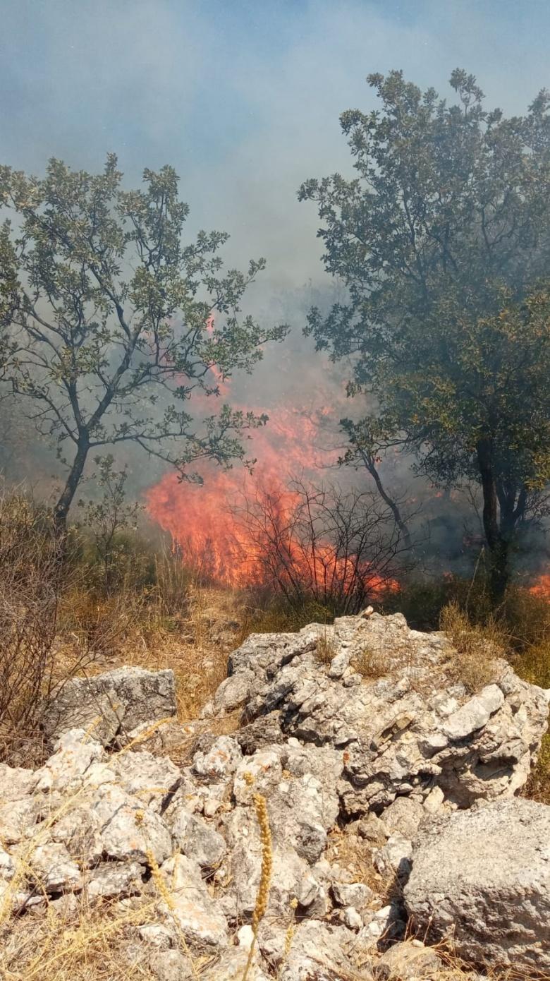 Alexandria Troas Antik Kenti'de çıkan orman yangını söndürüldü