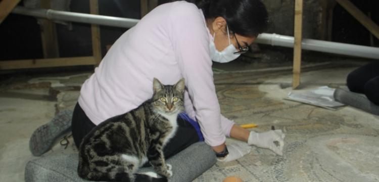 Sinop'ta bulunan 1600 yıllık mozaiklerin restorasyonu devam ediyor