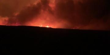 Eber Gölündeki yangında 8 bin dekar kamışlık alan zarar gördü