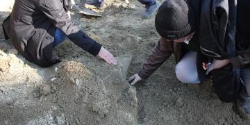 Amasya Suluovada mamutlara ait olduğu değerlendirilen fosiller bulundu