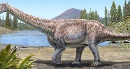 Keşfedilen yeni dinozor türüne Arackar licanantay adı verildi