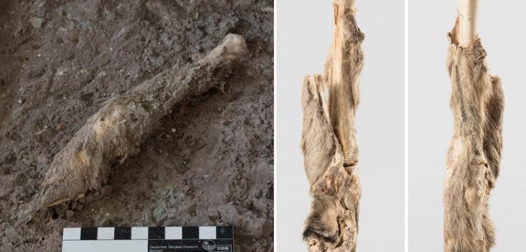 İran'da bulunan 1600 Yıllık Koyun kalıntısının DNA'sı incelendi