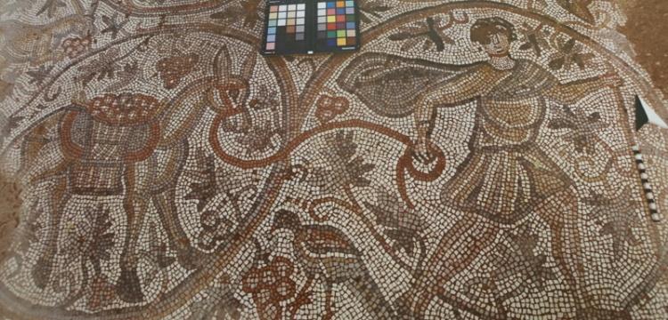 Üzüm hasadı temalı mozaik 6 Eylül'de ziyarete açılacak