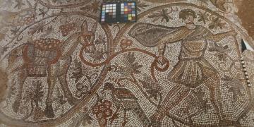 Üzüm hasadı temalı mozaik 6 Eylülde ziyarete açılacak