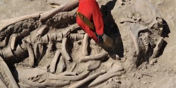 İremir Höyüğünde Urartu geleneklerine göre gömülmüş 2 mezar bulundu