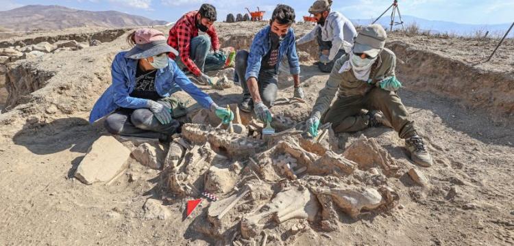 Van'da hayvanlarla gömülmüş bir Urartu soylusu mezarı bulundu