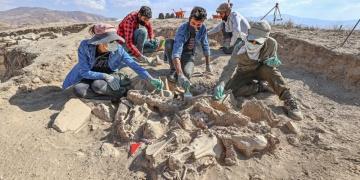 Vanda hayvanlarla gömülmüş bir Urartu soylusu mezarı bulundu
